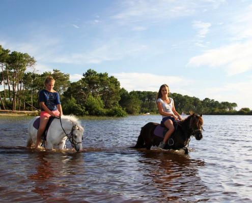 Activités autour du domaine - Equitation